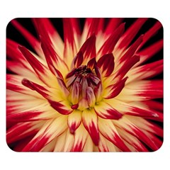 Bloom Blossom Close Up Flora Double Sided Flano Blanket (Small)