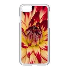 Bloom Blossom Close Up Flora Apple Iphone 7 Seamless Case (white)