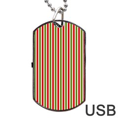 Pattern Background Red White Green Dog Tag Usb Flash (two Sides)