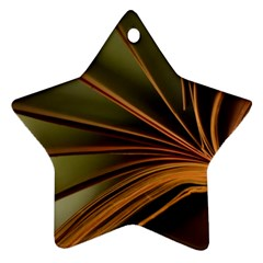 Book Screen Climate Mood Range Ornament (star)