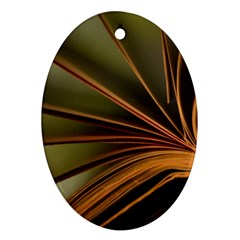 Book Screen Climate Mood Range Oval Ornament (two Sides)