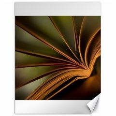 Book Screen Climate Mood Range Canvas 18  x 24
