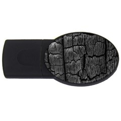 Coal Charred Tree Pore Black Usb Flash Drive Oval (2 Gb)