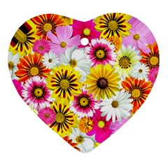 Flowers Blossom Bloom Nature Plant Ornament (heart)
