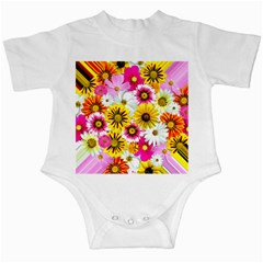Flowers Blossom Bloom Nature Plant Infant Creepers