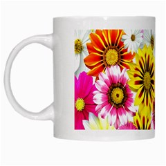 Flowers Blossom Bloom Nature Plant White Mugs