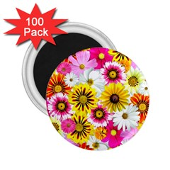 Flowers Blossom Bloom Nature Plant 2.25  Magnets (100 pack)