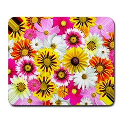 Flowers Blossom Bloom Nature Plant Large Mousepads