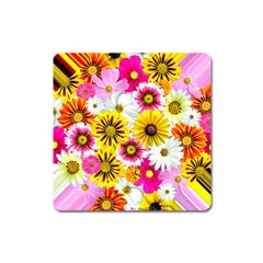 Flowers Blossom Bloom Nature Plant Square Magnet