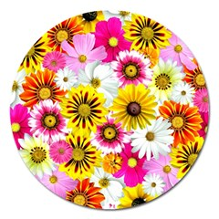 Flowers Blossom Bloom Nature Plant Magnet 5  (round)