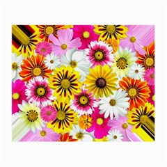 Flowers Blossom Bloom Nature Plant Small Glasses Cloth