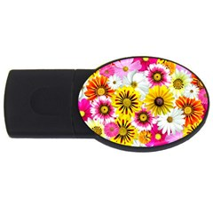 Flowers Blossom Bloom Nature Plant Usb Flash Drive Oval (4 Gb)