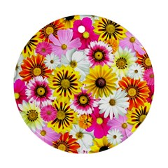 Flowers Blossom Bloom Nature Plant Round Ornament (two Sides)