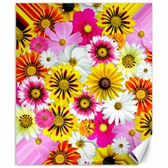 Flowers Blossom Bloom Nature Plant Canvas 8  X 10