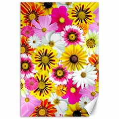 Flowers Blossom Bloom Nature Plant Canvas 12  X 18