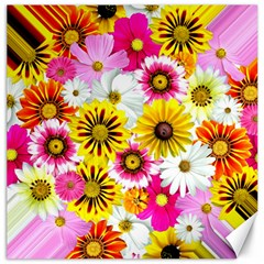 Flowers Blossom Bloom Nature Plant Canvas 16  X 16