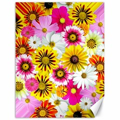 Flowers Blossom Bloom Nature Plant Canvas 18  X 24
