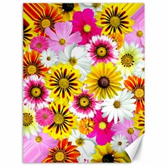 Flowers Blossom Bloom Nature Plant Canvas 36  X 48