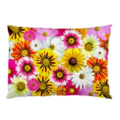 Flowers Blossom Bloom Nature Plant Pillow Case (two Sides)