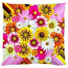 Flowers Blossom Bloom Nature Plant Large Flano Cushion Case (one Side)