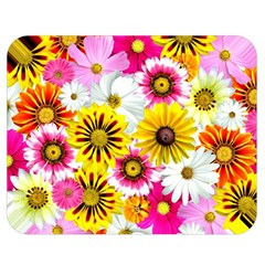 Flowers Blossom Bloom Nature Plant Double Sided Flano Blanket (medium)