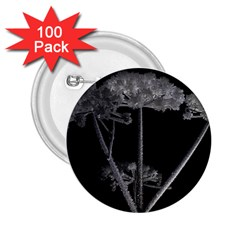 Dog Tube White Night Dark Ice 2 25  Buttons (100 Pack)