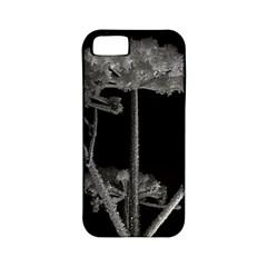 Dog Tube White Night Dark Ice Apple Iphone 5 Classic Hardshell Case (pc+silicone)