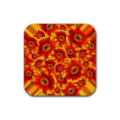 Gerbera Flowers Blossom Bloom Rubber Square Coaster (4 pack)