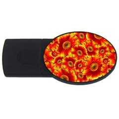 Gerbera Flowers Blossom Bloom Usb Flash Drive Oval (2 Gb)