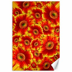 Gerbera Flowers Blossom Bloom Canvas 12  X 18