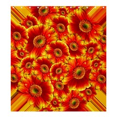 Gerbera Flowers Blossom Bloom Shower Curtain 66  X 72  (large)