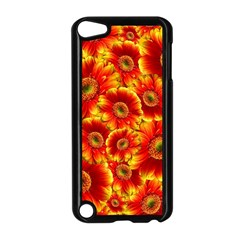 Gerbera Flowers Blossom Bloom Apple Ipod Touch 5 Case (black)