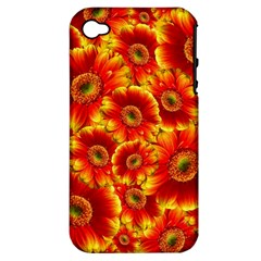 Gerbera Flowers Blossom Bloom Apple Iphone 4/4s Hardshell Case (pc+silicone)