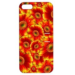 Gerbera Flowers Blossom Bloom Apple Iphone 5 Hardshell Case With Stand