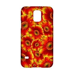 Gerbera Flowers Blossom Bloom Samsung Galaxy S5 Hardshell Case