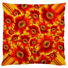 Gerbera Flowers Blossom Bloom Large Flano Cushion Case (two Sides)