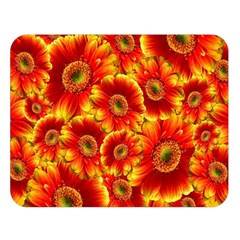Gerbera Flowers Blossom Bloom Double Sided Flano Blanket (large)