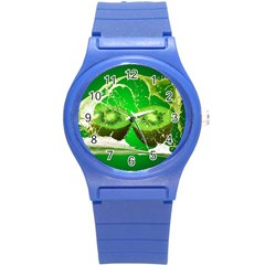 Kiwi Fruit Vitamins Healthy Cut Round Plastic Sport Watch (s)