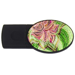Colorful Design Acrylic Usb Flash Drive Oval (2 Gb)