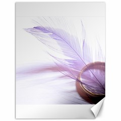 Ring Feather Marriage Pink Gold Canvas 12  X 16