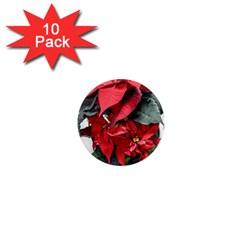 Star Of Bethlehem Star Red 1  Mini Magnet (10 Pack)