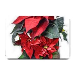 Star Of Bethlehem Star Red Small Doormat