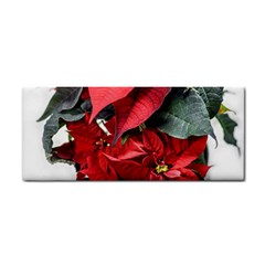 Star Of Bethlehem Star Red Cosmetic Storage Cases