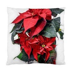 Star Of Bethlehem Star Red Standard Cushion Case (two Sides)