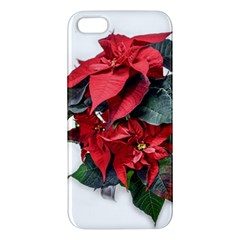 Star Of Bethlehem Star Red Apple Iphone 5 Premium Hardshell Case