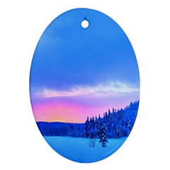 Winter Landscape Snow Forest Trees Ornament (oval)