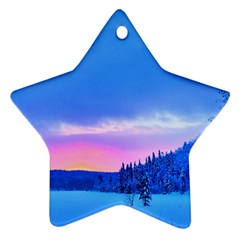 Winter Landscape Snow Forest Trees Star Ornament (Two Sides)