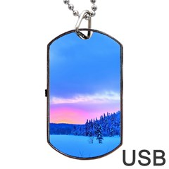 Winter Landscape Snow Forest Trees Dog Tag Usb Flash (two Sides)
