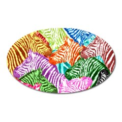 Zebra Colorful Abstract Collage Oval Magnet