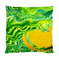 Zitro Abstract Sour Texture Food Standard Cushion Case (two Sides)